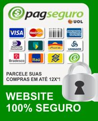 site_seguro